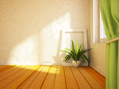 plants-to-grow-in-your-bedroom